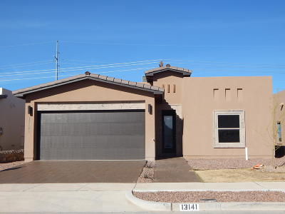 El Paso Single Family Home For Sale: 13141 Lost Willow