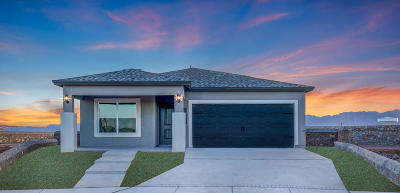 Single Family Home For Sale: 14905 Tierra Haven