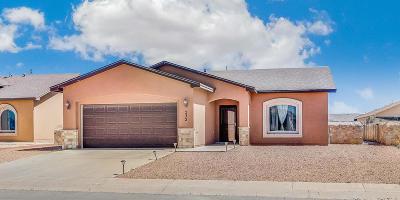 El Paso Single Family Home For Sale: 232 Flor Acacia Lane