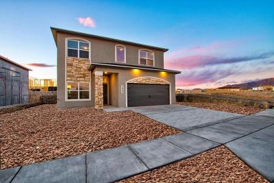 El Paso Single Family Home For Sale: 14736 Tierra Escape Avenue
