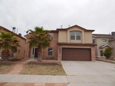 El Paso Single Family Home For Sale: 3013 Tierra Cuervo Drive