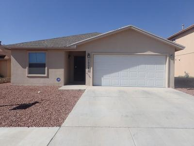 El Paso Rental For Rent: 10041 Paloma Drive