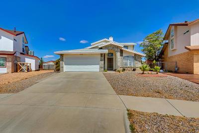 El Paso Rental For Rent: 11368 Loma Linda Circle