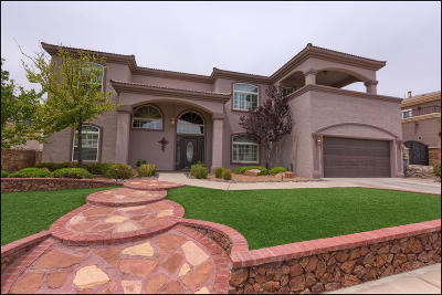El Paso Single Family Home For Sale: 1467 Shelby Ridge Drive