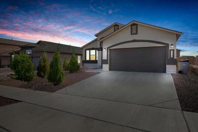 El Paso Rental For Rent: 12156 Cherry Wood Lane