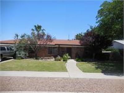 El Paso Rental For Rent: 9109 Lait Drive