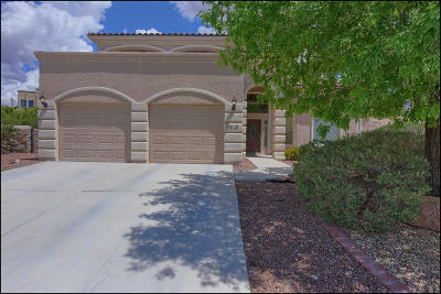 El Paso Single Family Home For Sale: 1312 Franklin Bloom Court
