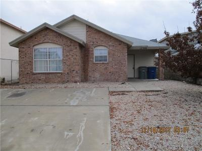 El Paso Single Family Home For Sale: 12300 Tierra Cadena Drive