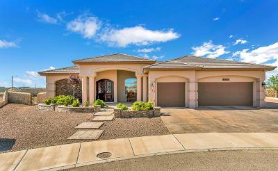 Single Family Home For Sale: 905 Aztec Dove Lane