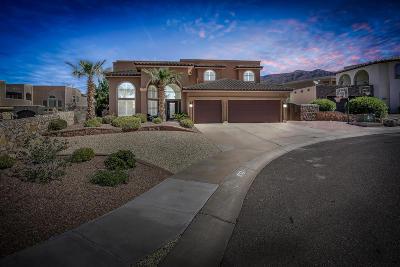 El Paso Single Family Home For Sale: 1309 Calle Del Sur