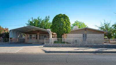 El Paso Single Family Home For Sale: 5361 Annette Avenue