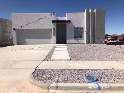 El Paso Single Family Home For Sale: 1715 Breeder Cup Way