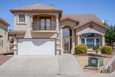 Single Family Home For Sale: 14157 Robert Ituarte Drive