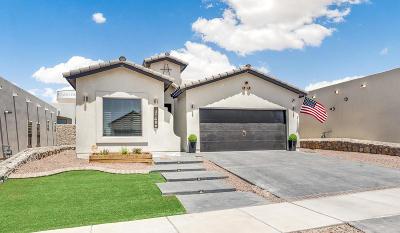 Horizon City Single Family Home For Sale: 13149 Wellington