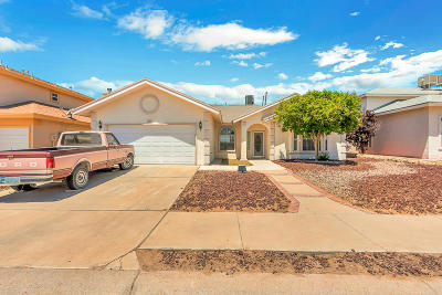 Single Family Home For Sale: 2153 Sun Country Drive