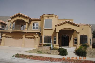 El Paso Single Family Home For Sale: 5608 Eagle Point Street