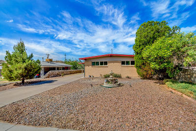 El Paso Single Family Home For Sale: 3511 Hixson Street