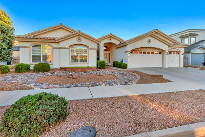 El Paso Single Family Home For Sale: 1217 Wind Ridge Drive