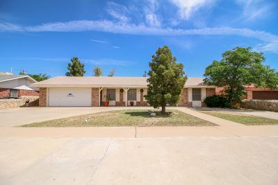 El Paso Single Family Home For Sale: 9913 Album Avenue