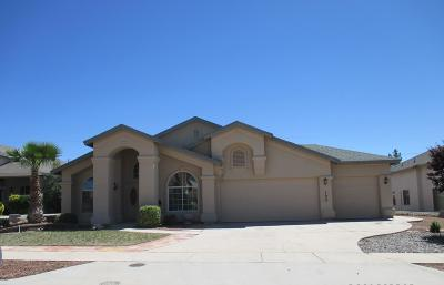 Canutillo Single Family Home For Sale: 700 La Florida Drive