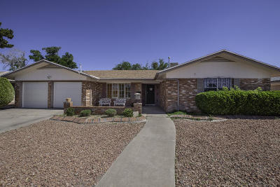 El Paso Single Family Home For Sale: 8905 Shaver Drive