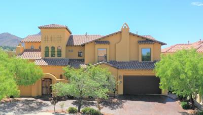Single Family Home For Sale: 1160 Calle Del Sur Drive