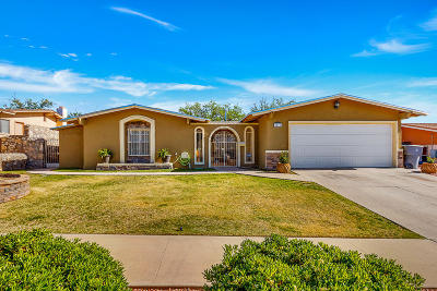 Chaparral Park Single Family Home For Sale: 6616 Pino Real Drive