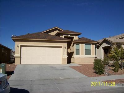Horizon City Single Family Home For Sale: 13141 Saker Drive