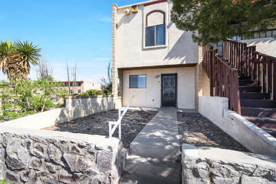 Las Cruces Multi Family Home For Sale: 2930 Claude Dove Drive #1