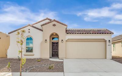 El Paso Single Family Home For Sale: 13672 Matfen Avenue
