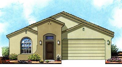 Single Family Home For Sale: 1102 Bronze Hill Avenue