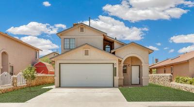 Socorro Single Family Home For Sale: 10240 Valle Rubio