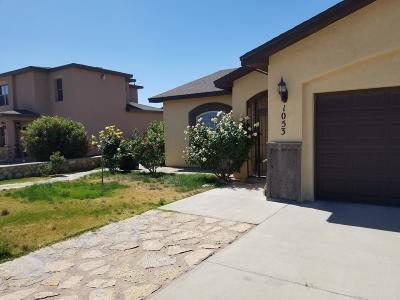 Socorro Single Family Home For Sale: 1053 Callisto Drive
