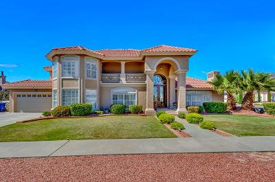 El Paso Single Family Home For Sale: 6501 Majestic Ridge Drive