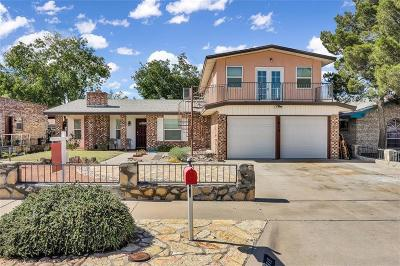 Vista Del Sol Single Family Home For Sale: 1815 Jerry Abbott Street