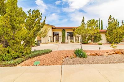 El Paso Single Family Home For Sale: 425 Golden Springs Drive