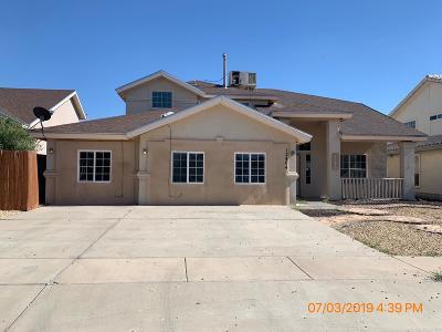 El Paso Single Family Home For Sale: 12404 Paseo Largo Circle