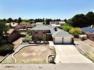 El Paso Single Family Home For Sale: 5613 Spiritus