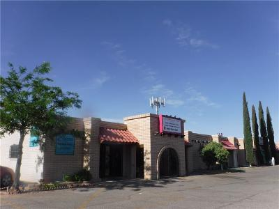 El Paso Commercial For Sale: 1848 Trawood Drive