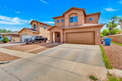 Single Family Home For Sale: 13057 Alex Chacon