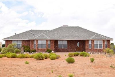 El Paso Single Family Home For Sale: 14101 Koshare Court