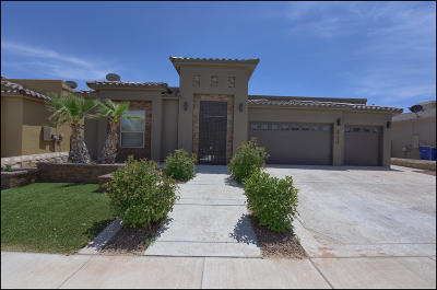 El Paso Single Family Home For Sale: 14676 Long Shadow Avenue