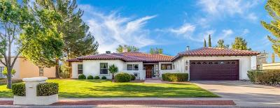 El Paso Single Family Home For Sale: 613 Willow Glen Drive