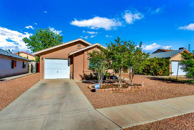 Single Family Home For Sale: 3424 Tierra Cobre Drive