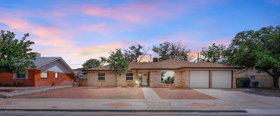 El Paso Single Family Home For Sale: 9041 Cosmos Avenue