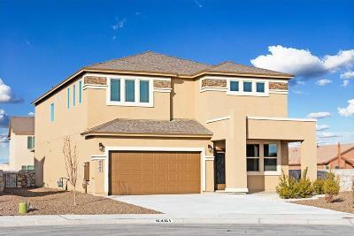 Single Family Home For Sale: 6461 Vilaggio Drive
