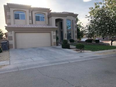 El Paso Single Family Home For Sale: 3937 Tierra Aurora Drive