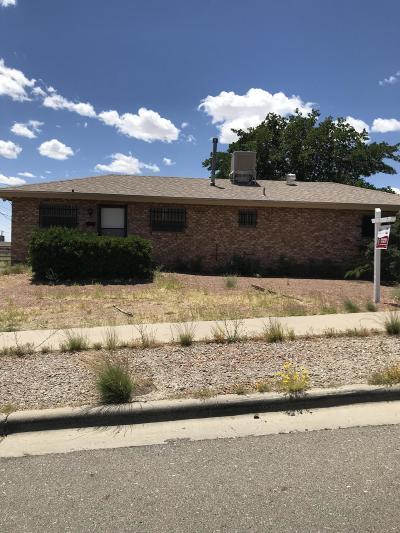 El Paso Single Family Home For Sale: 3718 Moonlight Avenue