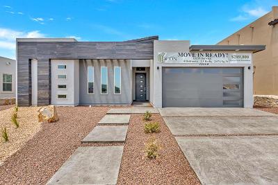 El Paso Single Family Home For Sale: 13159 Borwick Road