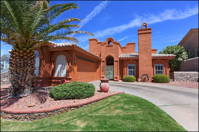 Chaparral Park Single Family Home For Sale: 6069 Los Siglos Drive